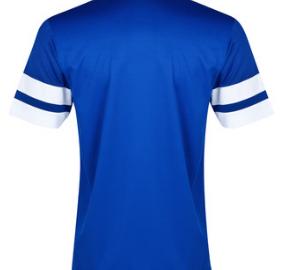 Everton home shirt blank back 2013-14
