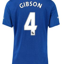 Darron Gibson Everton 2015-16