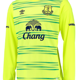 Everton goalkeeper shirt 2015-16