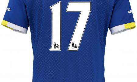 Mo Besic Everton