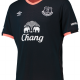Everton away 2016-17