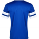 Everton home shirt blank back 2013-14