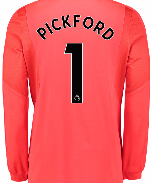 Pickford Everton one