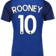 Rooney-Everton (1)